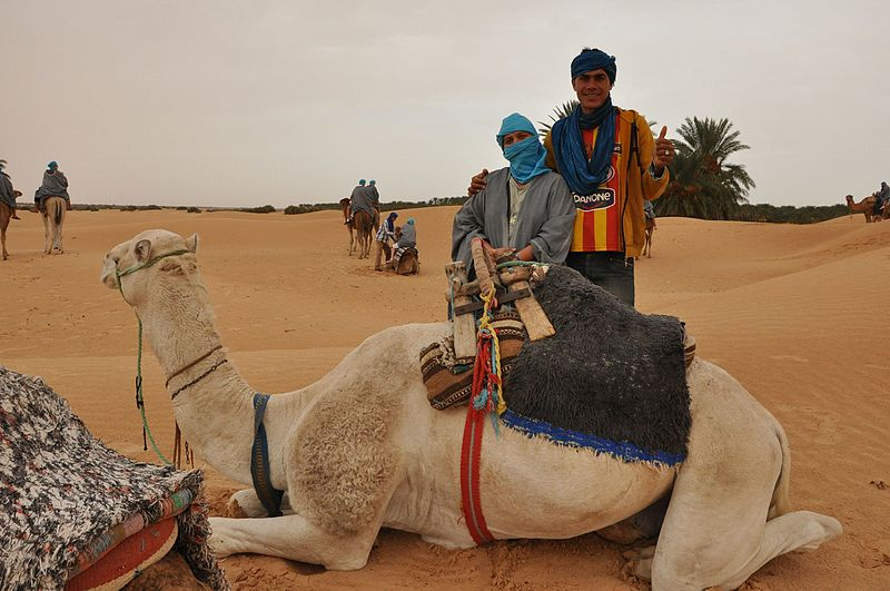 Balade en chameau à Douz