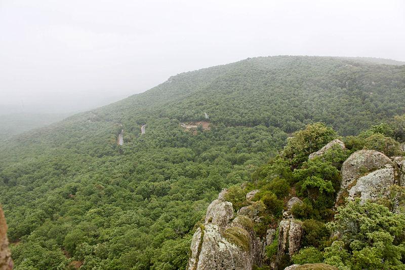 Randonnée au Parc Naturel National d'El Feidja