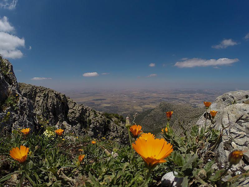 Vue du Parc national de Jebel Zaghouan