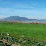 Circuit 8 jours au Nord de la Tunisie