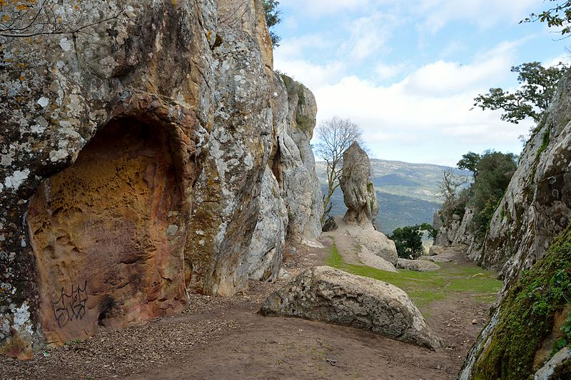 Trekking au Parc Naturel National d'El Feidja.